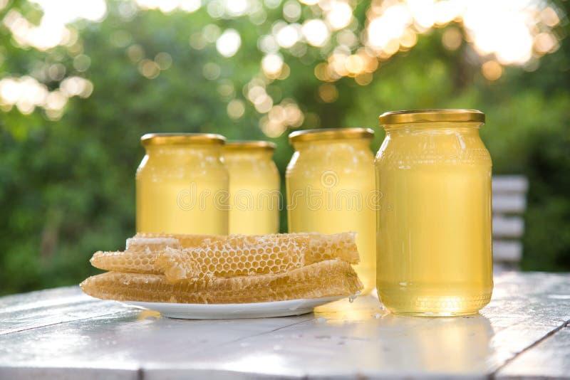 Bikupabikuparam med bivaxstrukturen mycket av ny bihonung i honungskakor på vita backgroundGlass av ny flytande royaltyfria bilder