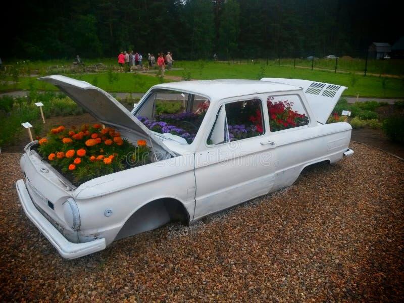 Bil med blommor fotografering för bildbyråer