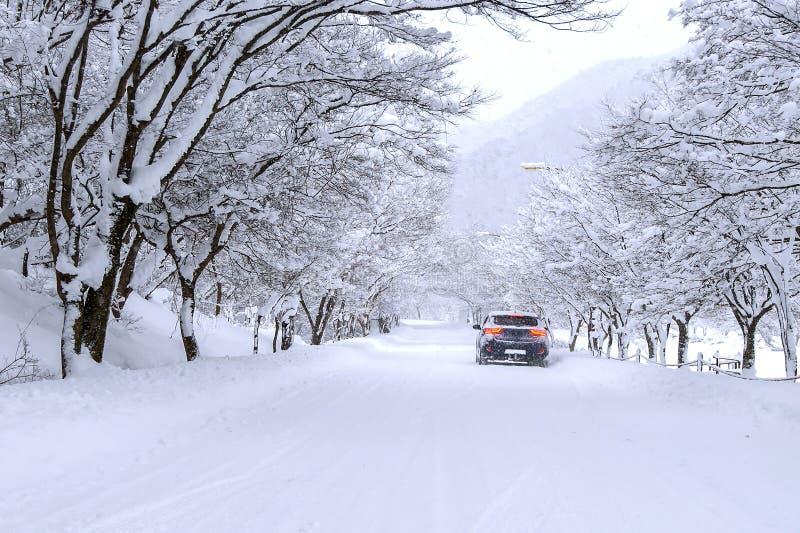 Bil och fallande insnöad vinter på skogvägen med mycket snö arkivbild