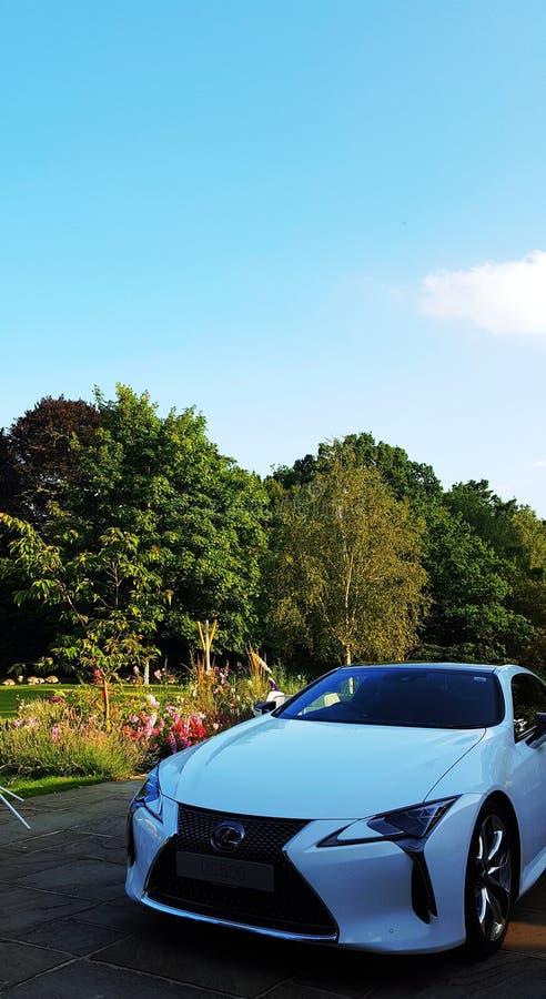 Bil och natur arkivbild