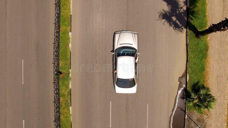 Bil på den högkvalitativa vägen med palmträd åt sidan, lopp med bilen, turism royaltyfria foton