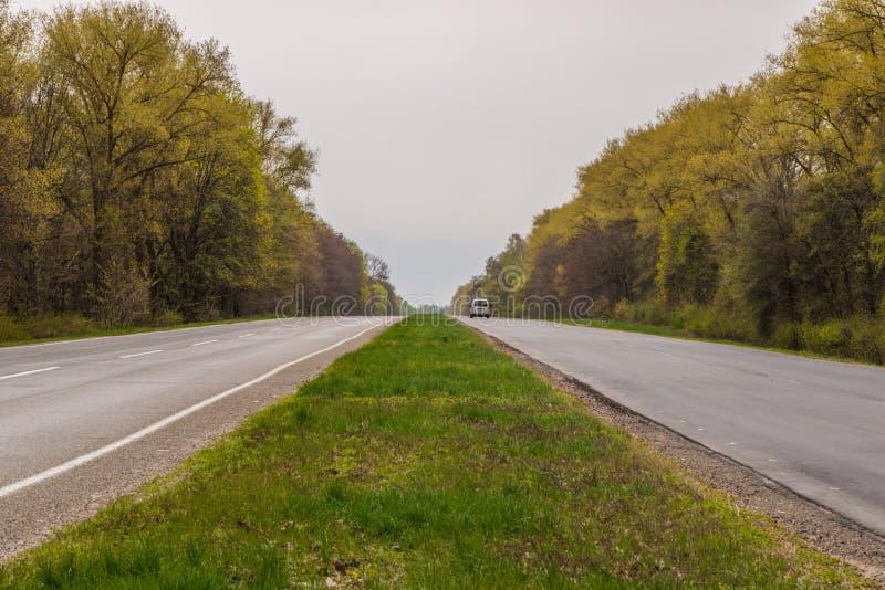 Bilar för asfaltväg och skogkör längs vägen arkivfoton