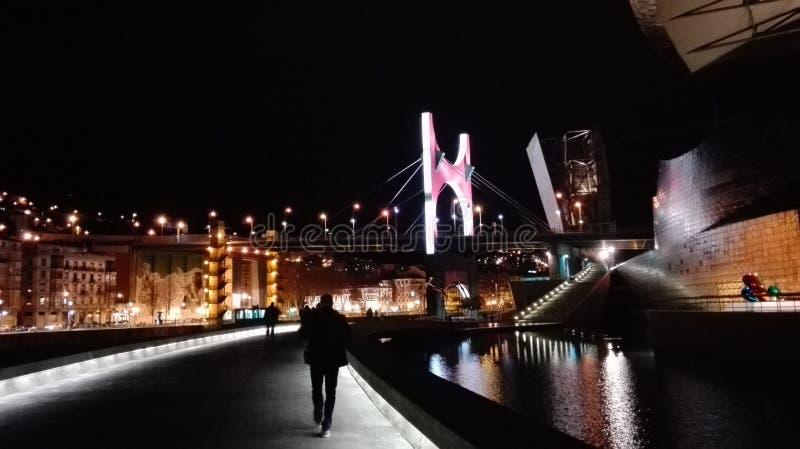 Bilbao vid natt, museum av naturhistoria royaltyfri fotografi