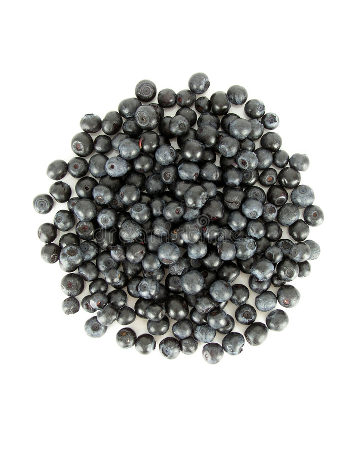 Bilberries. Isolated royalty free stock photography