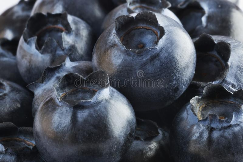 Bilberries background. A lot of bilberries ,studio shot ,selective focus ,light contrast royalty free stock photography