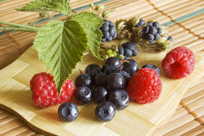 Bilberries,blackberry and raspberries. Summer fruits royalty free stock image