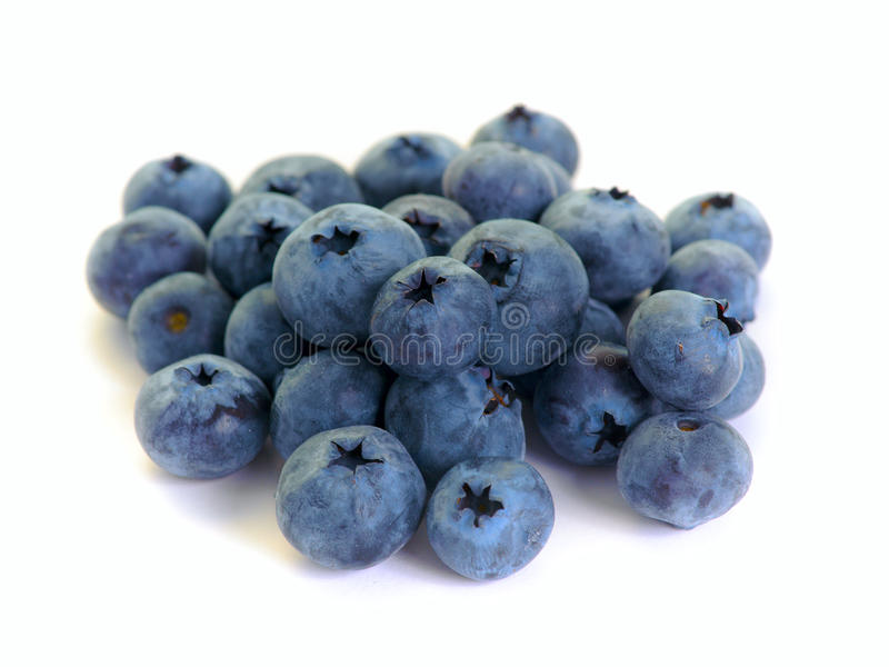 Bilberry royalty free stock photography