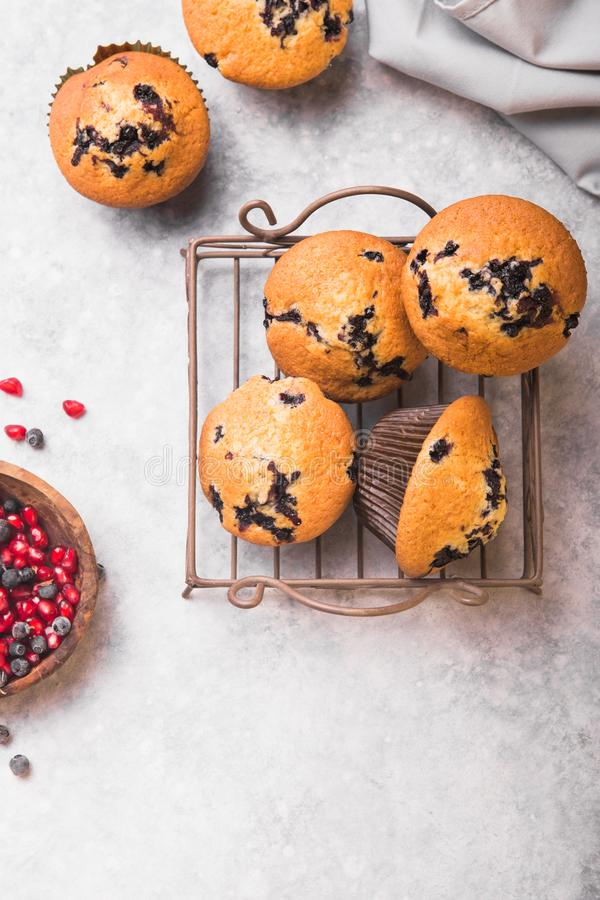 Bilberry cup cakes or muffins with fresh berries. top view stock photos
