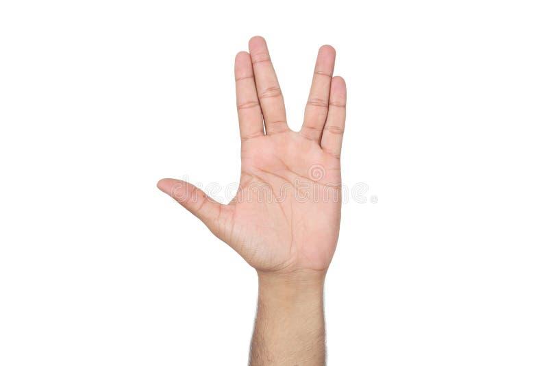 Bild av den mänskliga handen royaltyfri foto