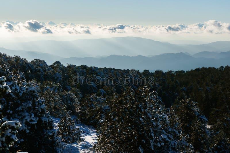 Bild av den snöig berglutningen, träd, molnig himmel royaltyfri fotografi