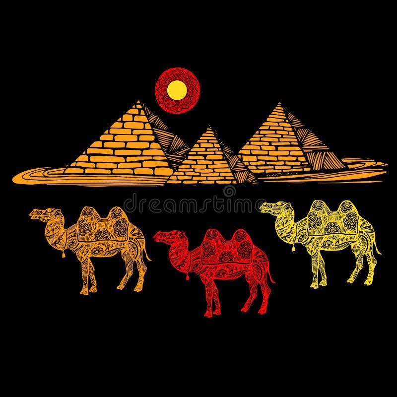 Bild av en kamel på en bakgrund av pyramiderna stock illustrationer