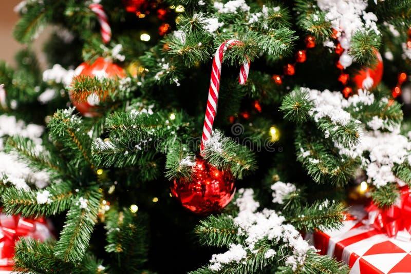 Bild av julgranen med röda bollar, karamellrottingar royaltyfri foto