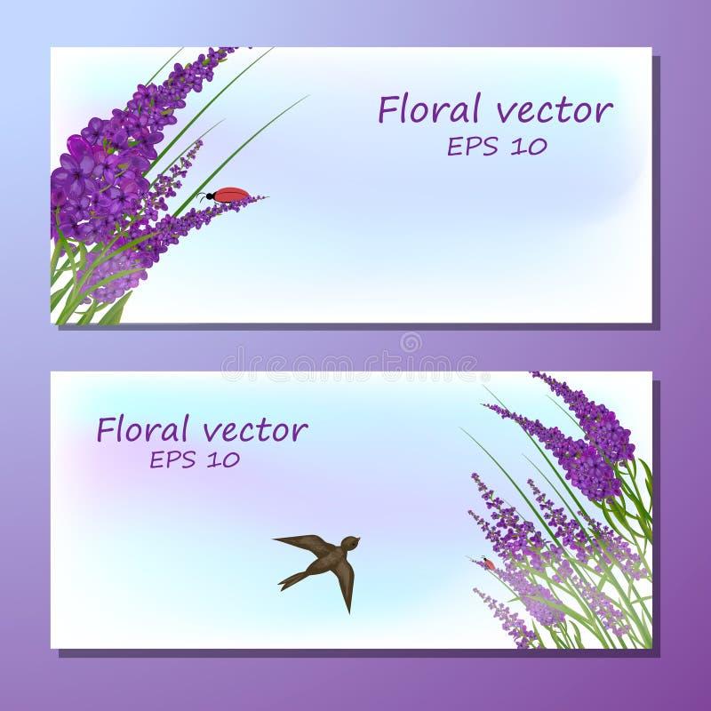 bild av lavendelfältet royaltyfri illustrationer