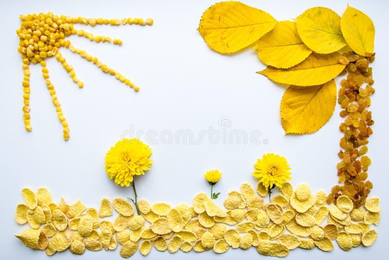 Bild av mat, blommor och sidor på en vit bakgrund arkivfoton