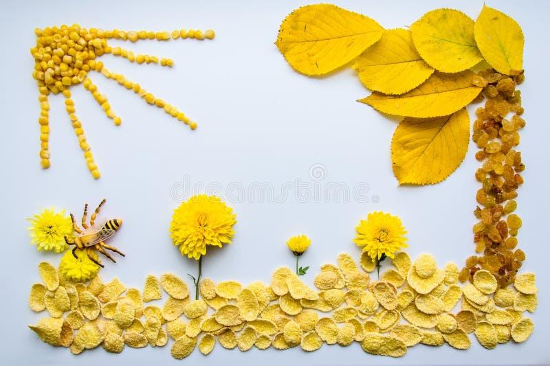 Bild av mat, blommor och sidor på en vit bakgrund royaltyfri fotografi