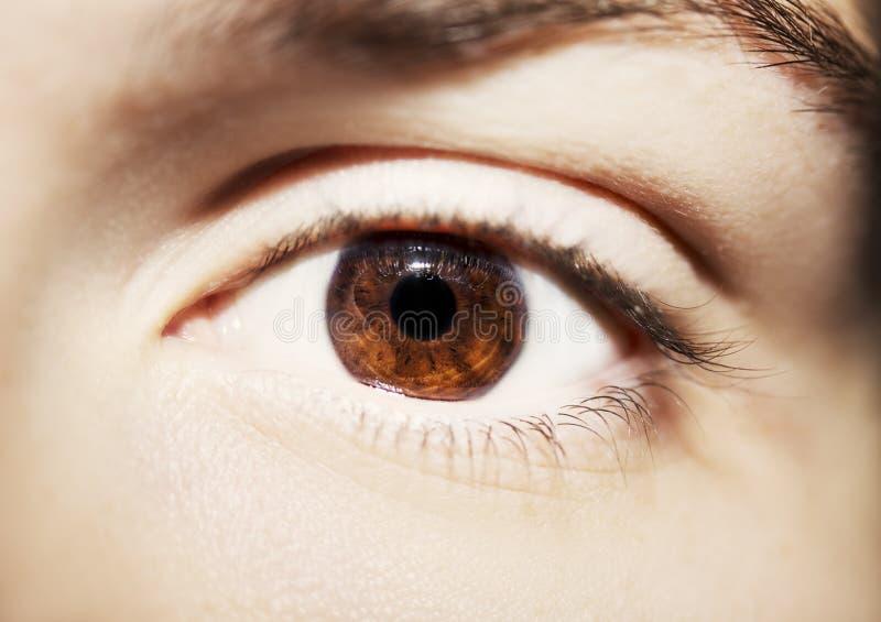 Bild av slutet för öga för blick för man` s det härliga insiktsfulla upp fotografering för bildbyråer