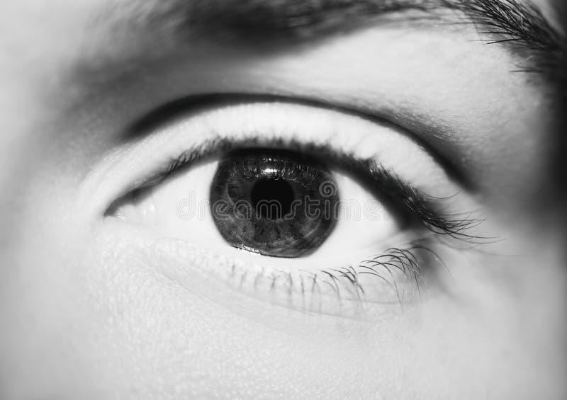 Bild av slutet för öga för blick för man` s det härliga insiktsfulla upp arkivfoto