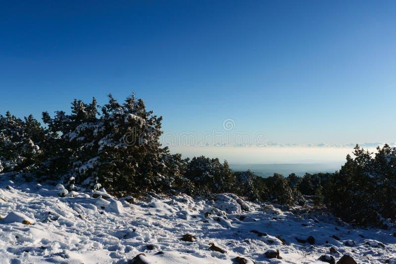 Bild av snöig berg, träd, blå himmel arkivfoto