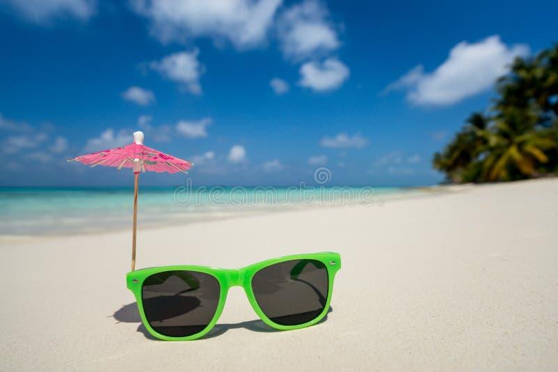 Bild av solglasögon på den tropiska stranden, semester Handelsresanden drömmer begrepp royaltyfri fotografi