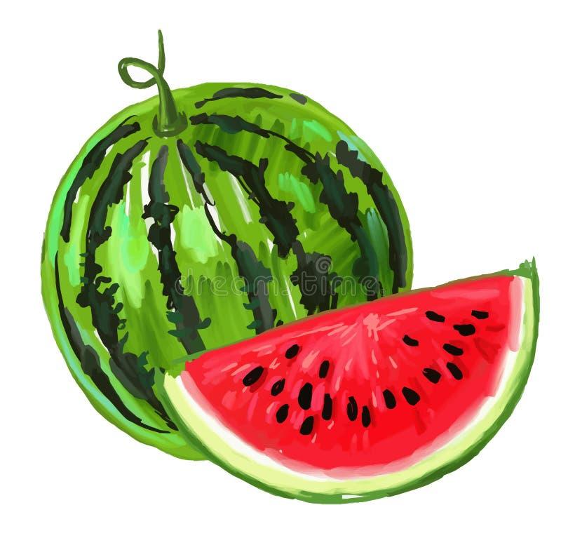 Bild av vattenmelon royaltyfri illustrationer