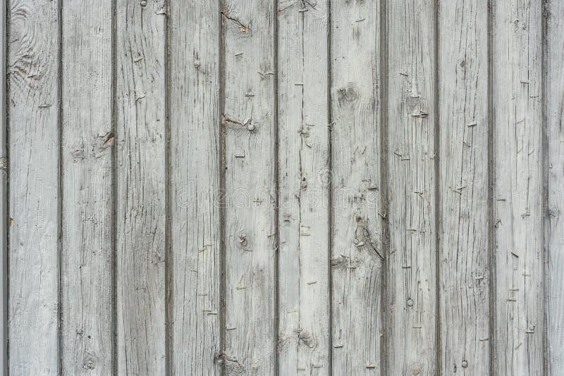 Bild av vitt naturligt trä texturerad bakgrund royaltyfria bilder