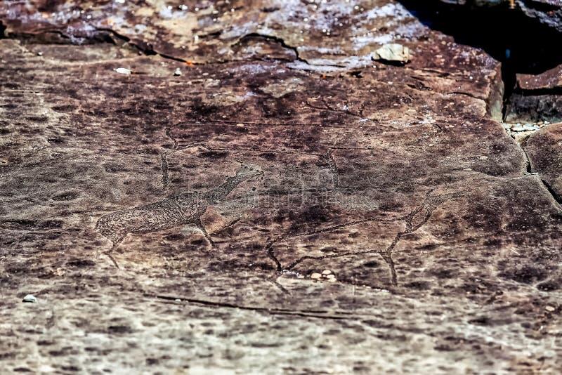 Bild der alten Jagd auf der Wand der Höhle ockerhaltig Historische Kunst arch?ologie lizenzfreie stockbilder