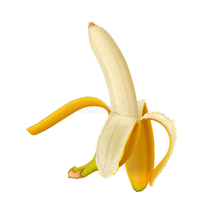 Bild der Banane stock abbildung
