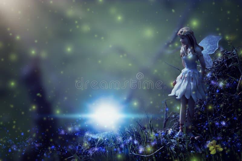 Bild der magischen kleinen Fee im Nachtwald stockfotos