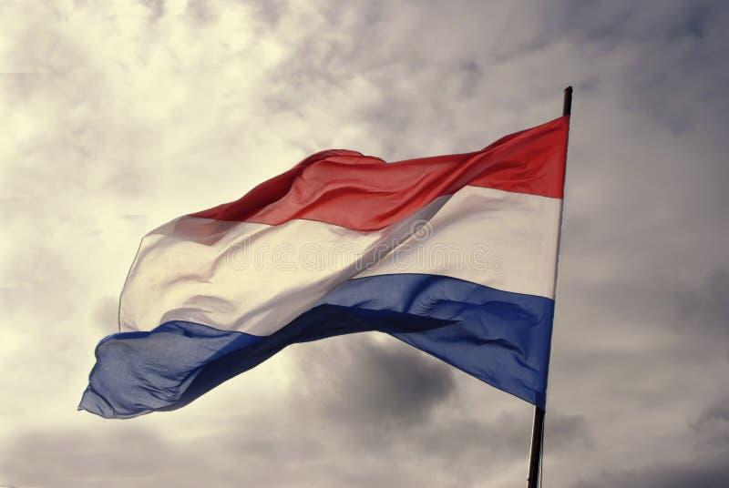 Niederländische Flagge stockbilder