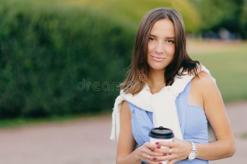 Bild der schönen jungen kaukasischen Frau mit dem dunklen Haar, trägt zufällige Kleidung, hält Wegwerftasse kaffee, steht agaist  stockbild