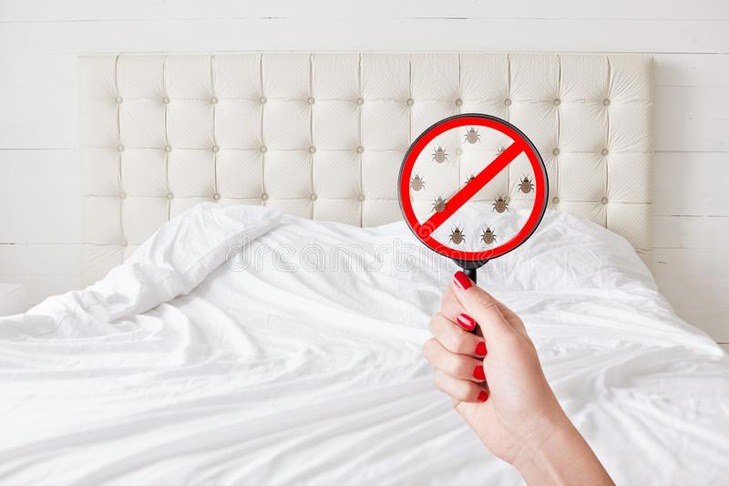 Bild der unerkennbaren Frau überprüft Schlafzimmer auf Reinheit, verlangt komplette Sauberkeit, keine Wanzen und Parasiten Stopps lizenzfreie stockbilder