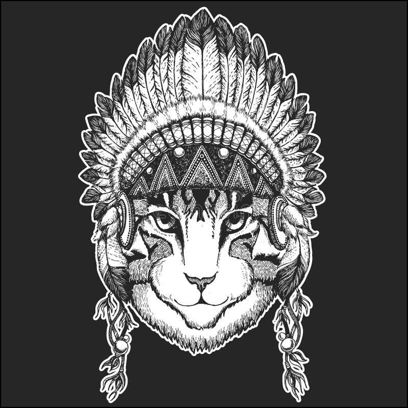 Bild des kühlen Tieres der Hauskatze, das gebürtigen indianischen Kopfschmuck mit schicker Art Federn Boho Hand gezeichnet trägt lizenzfreie abbildung