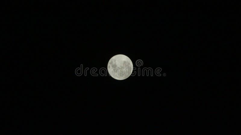 Bild des Mondes lizenzfreie stockfotos