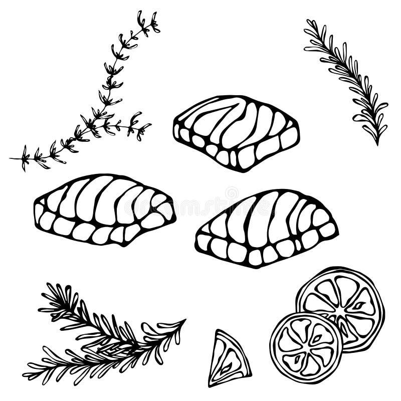 Bild des Steaks der roten Fisch-Lachse, der Zitrone und der Kräuter für Meeresfrüchte-Menü Tinten-Vektor-Illustration lokalisiert vektor abbildung