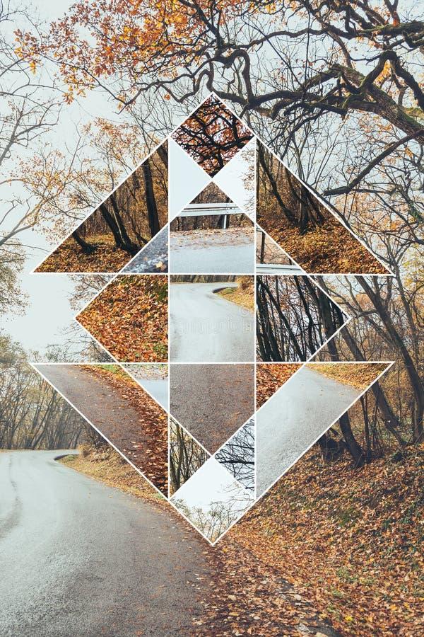 Bild des Waldes im Herbst und im heiligen Geometriesymbol lizenzfreie stockfotografie