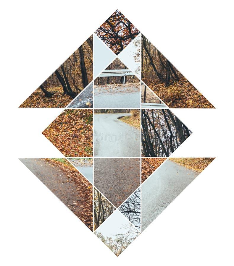 Bild des Waldes im Herbst und im heiligen Geometriesymbol stockbilder