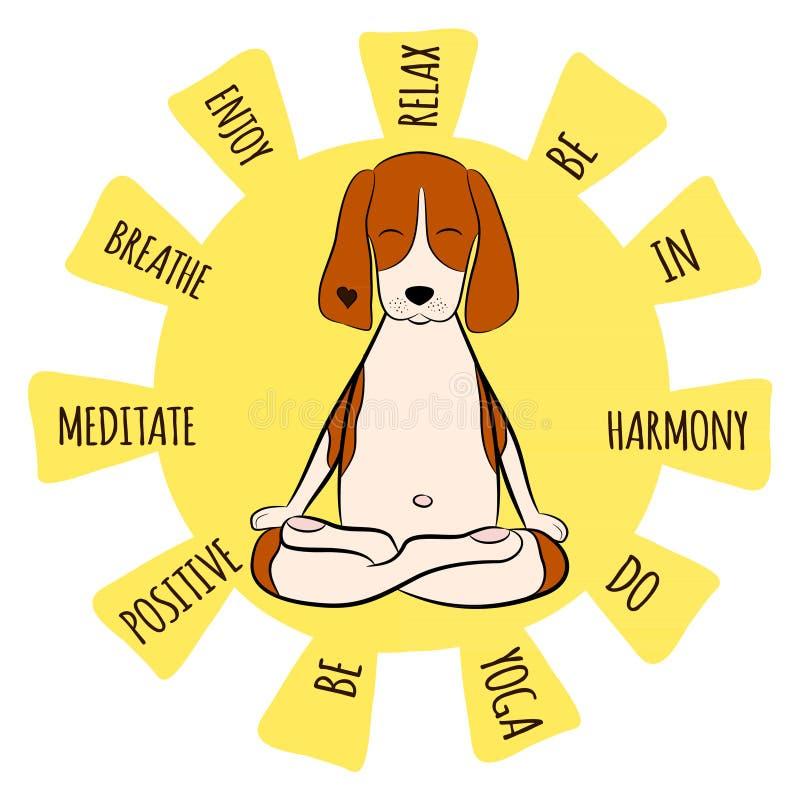 Bild eines lustigen Spürhunds der Karikatur Hunde, derauf Lotussitz von Yoga sitzt stock abbildung