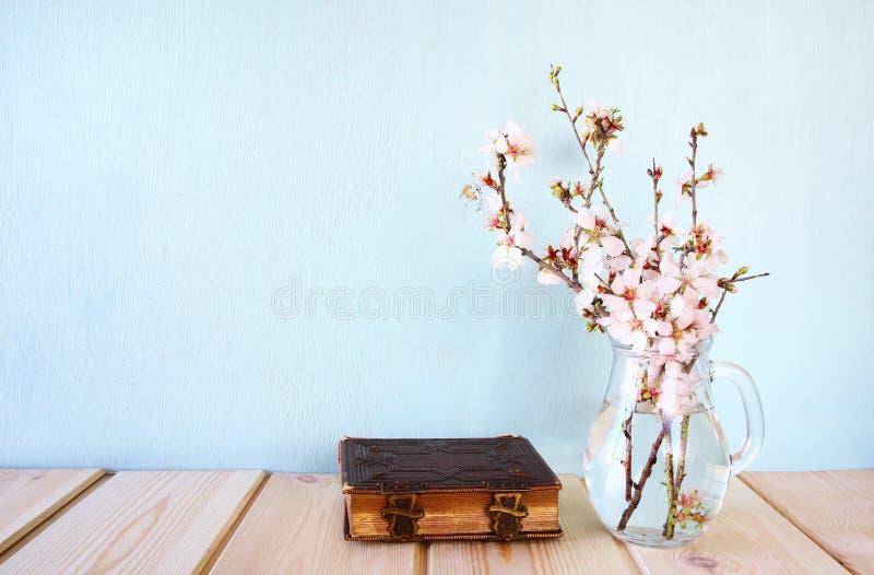 bild för bästa sikt av trädet för körsbärsröda blomningar för vår det vita arkivfoto