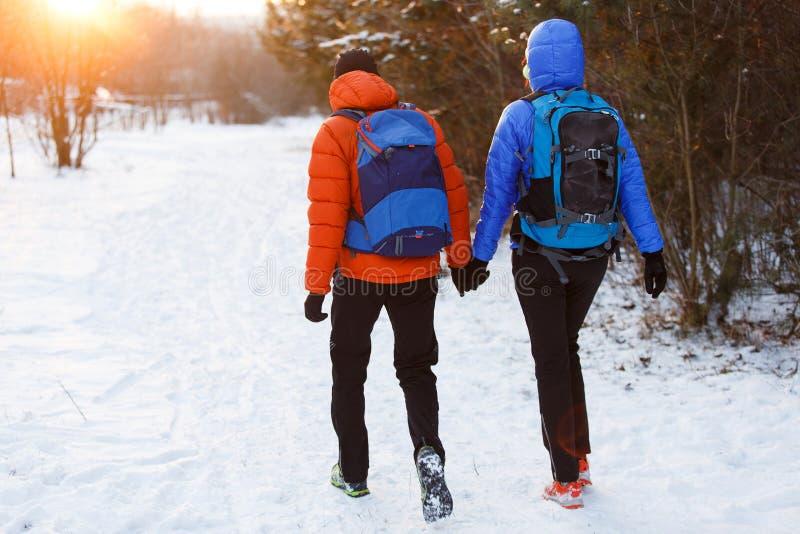 Bild från baksida av mannen och kvinnan med ryggsäckar i vinterskog royaltyfria foton
