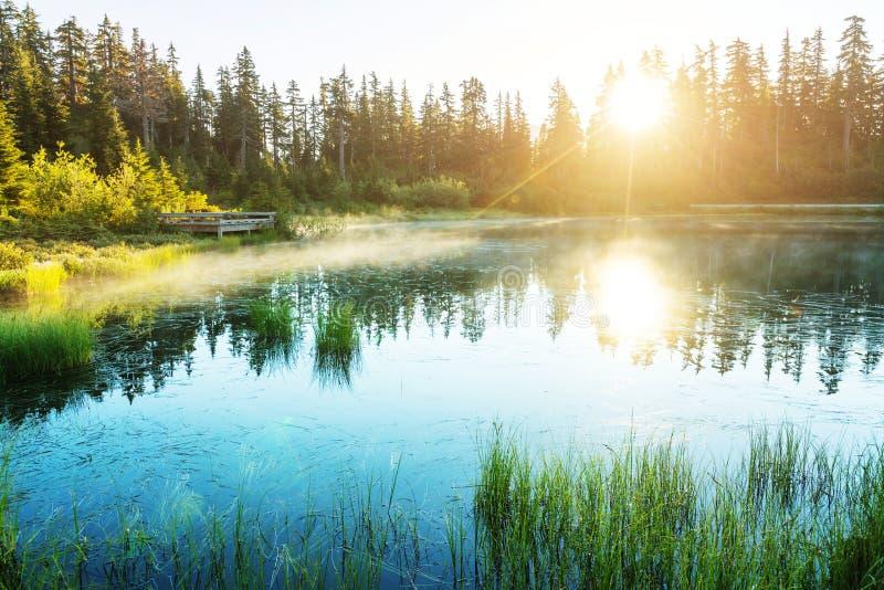 Download Bild Lake arkivfoto. Bild av stillsamt, inspiration, lake - 76703936
