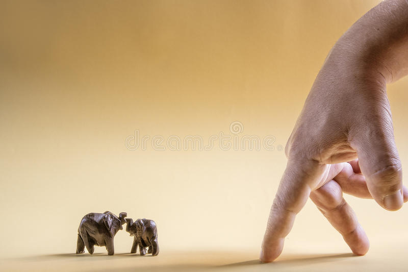 Bild som är allusive till mänsklig växelverkan med elefanter royaltyfri fotografi