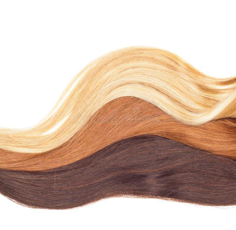 Bild von remy Frau ` s Haarerweiterungen in unterschiedlichem Farbisolator stockfotos