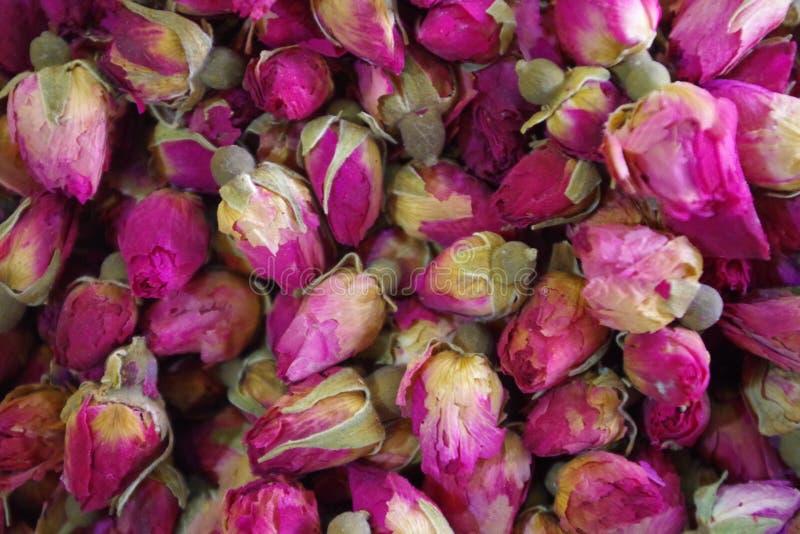 Bild von roseheads für die Kosmetikindustrie und besonders für die Parfümerie lizenzfreie stockbilder