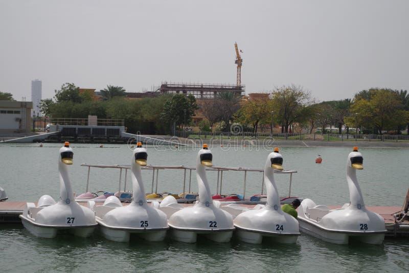 Bild von Schwan-förmigen Tretbooten auf einem See bereit zum Tag stockfotos
