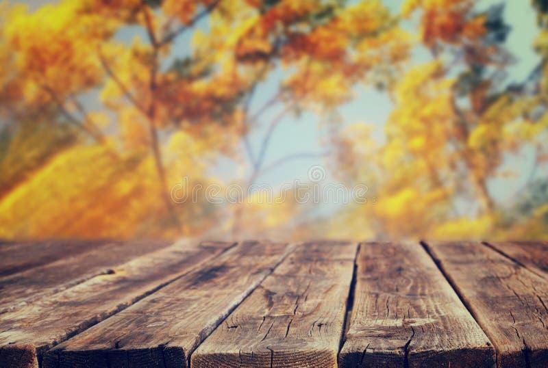Bild von vorderen rustikalen hölzernen Brettern und von Hintergrund des Falles verlässt im Wald lizenzfreie stockbilder