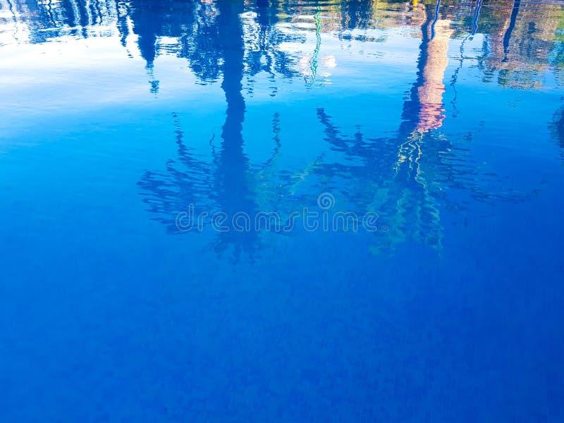 Bild, wo beobachtet zu werden ist m?glich, in der Oberfl?che des Wassers der reflektierten Palmen eines Swimmingpools zwei Benido lizenzfreie stockbilder