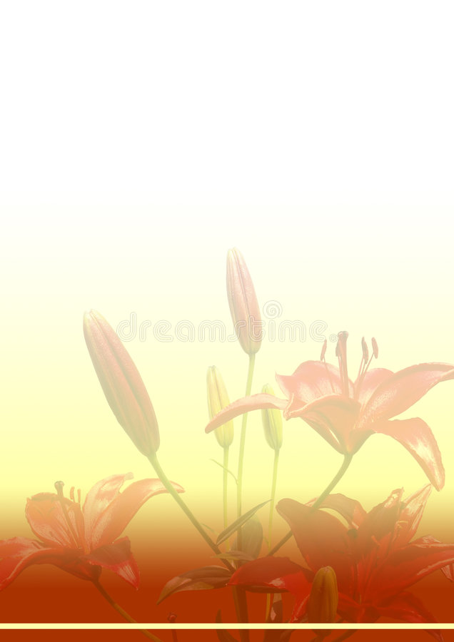 bilda röda liljar royaltyfria foton
