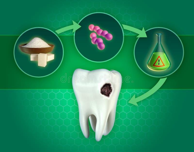 Bildande av tandläkarmottagningar vektor illustrationer