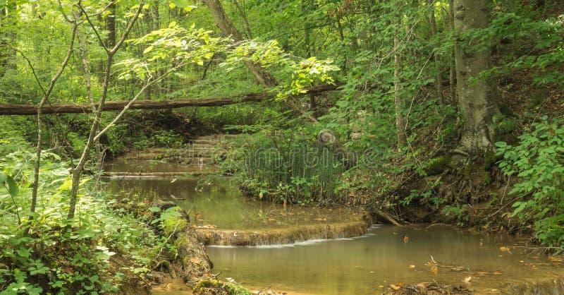Bildande för vatten för trappamomentTravertine - 3 arkivbild