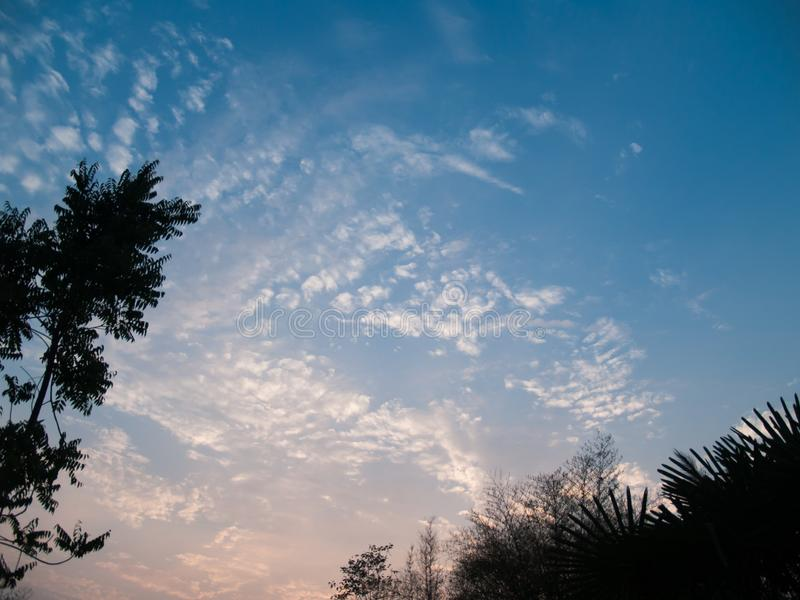 Bilden av himlen med moln och träd på hörnet royaltyfria foton